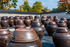 韩国泡菜瓶子 图库摄影