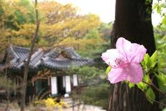 韩文宫殿 库存图片