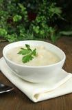 韭葱和土豆汤 免版税库存图片