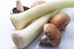 韭葱和蘑菇在白色从上面 库存图片
