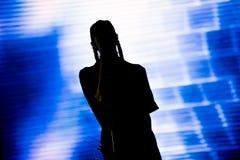 音乐会人群迷居住 阶段的艺术家 库存照片