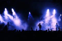 音乐会人群 免版税图库摄影