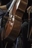 音乐会的一名大提琴手 免版税图库摄影