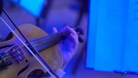 音乐会的小提琴手 演奏在美好的光的音乐家无意识而不停地拨弄 特写镜头 股票录像