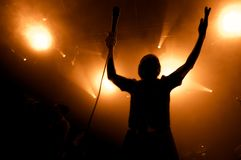 音乐会的摇滚歌手 库存图片