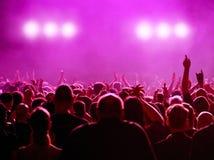 音乐会紫红色 免版税图库摄影