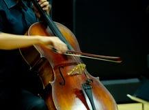 音乐家弹小提琴 免版税库存照片