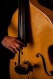 音乐家播放低音提琴 免版税库存照片