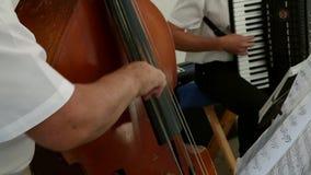 音乐家的手低音弦的 影视素材