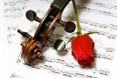 音乐玫瑰色页小提琴 图库摄影