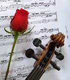 音乐玫瑰色页小提琴 免版税库存图片