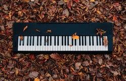 音乐的声音在秋天森林钢琴的 免版税图库摄影