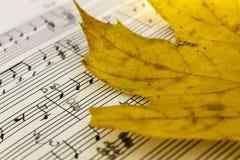 活页乐谱,乐谱,在纸的音乐 免版税库存照片