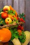 顶上的在篮子的观点的秋天菜和果子求爱 免版税库存图片