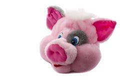 顶头猪玩具 图库摄影