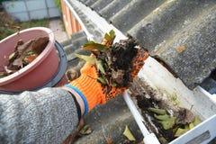 顶房顶从叶子的天沟清洁在秋天与手 屋顶天沟清洁技巧 免版税库存照片