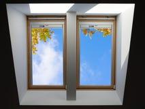 顶房顶俯视蓝天和秋天橡木叶子的窗口 库存照片