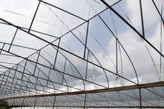 顶房顶植物产业摘要背景的托儿所农场 图库摄影