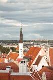 顶房顶老塔林街道的顶视图与中世纪房子 库存图片