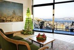 顶楼房屋和圣诞树 库存照片