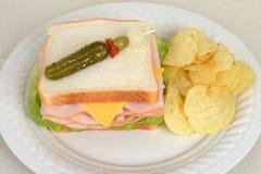顶视图与土豆片的鸡肉三明治 免版税库存照片
