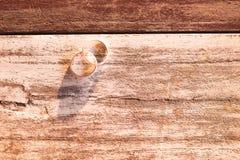 顶视图和温暖的口气 两投入在木的银色圆环是ba 库存图片