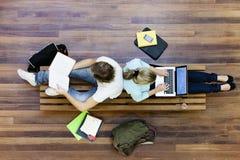 顶视图大学生学习 免版税库存照片