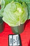 顶视图新近地,被采摘的圆白菜在一个热带农夫市场上 免版税库存照片