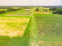 顶视图有干草的黑莓农场在土地休息在得克萨斯, Ame 库存照片