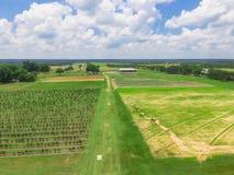 顶视图有干草的黑莓农场在土地休息在得克萨斯, Ame 免版税库存图片