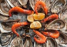顶视图牡蛎背景用开放牡蛎用虾和l 免版税库存照片