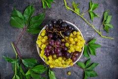 顶视图碗各种各样的葡萄:红色,白色和黑莓果和绿色叶子有水下落的在黑暗的具体背景 S 免版税图库摄影