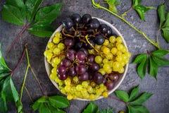 顶视图碗各种各样的葡萄:红色,白色和黑莓果和绿色叶子有水下落的在黑暗的具体背景 S 库存图片