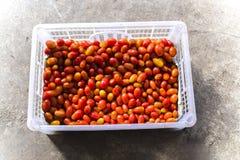顶视图红色西红柿特写镜头细节在开放塑料透明包装的容器的 免版税库存照片