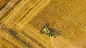 顶视图联合收割机会集麦子在日落 收获粮田,庄稼季节 股票录像