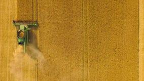 顶视图联合收割机会集麦子在日落 收获粮田,庄稼季节 股票视频