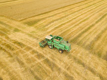 顶视图联合收割机会集麦子在日落 Harvesti 免版税库存照片