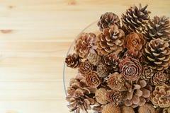 顶视图许多另外类型和自然干燥杉木锥体的另外大小在一个玻璃碗的,有设计的自由空间的 库存图片