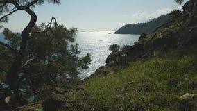 顶视图通过在海上的草 影视素材