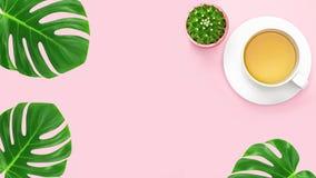 顶视图,办公室有拷贝空间的桌书桌 与绿色热带叶子和茶杯,在蓝色桃红色背景的仙人掌的工作区框架 免版税库存图片