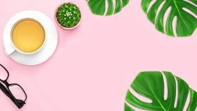 顶视图,办公室有拷贝空间的桌书桌 与绿色热带叶子和茶杯,仙人掌的工作区框架,在蓝色桃红色背景 图库摄影