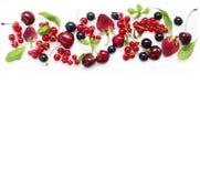 顶视图 在白色背景的各种各样的新鲜的夏天莓果 库存照片