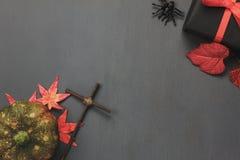顶视图/平的位置万圣夜` s南瓜和辅助部件或者项目叶子蜘蛛和礼物/礼物在土气木背景 免版税库存照片