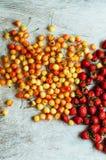 顶视图 新鲜水果 成熟水多的可口草莓和ye 免版税库存图片