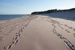 顶面加拿大海滩 库存图片
