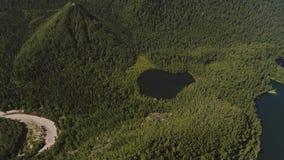 顶面空气视图黑色深湖在密集的绿色植被中位于在夏天,在山旁边 股票录像