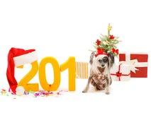 顶饰的小中国人坐而不是在题字的最后数字2018年 新年` s题材 查出 图库摄影