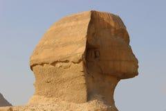 顶头狮身人面象 库存照片
