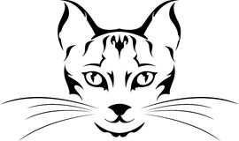 顶头猫纹身花刺 免版税图库摄影