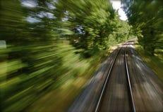 项目符号森林培训 免版税图库摄影